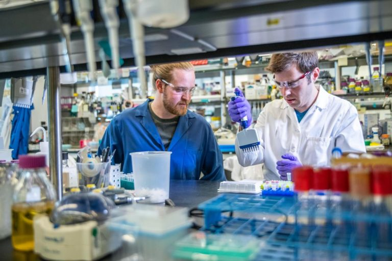 Jaką aparaturę laboratoryjną warto wybrać?
